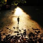 Der-Weg-des-Lichts