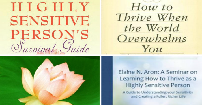 Support your creativity and healthy life as a highly sensitive person