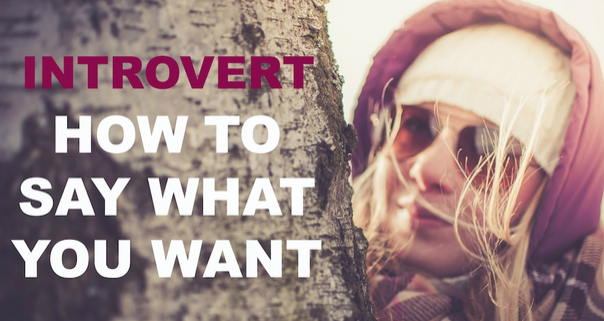 Introvert - How To Say