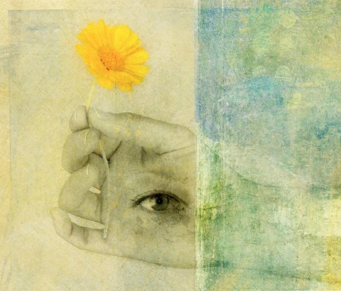flower-hand-eye image