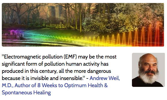 Andrew Weil MD on dangers of EMF