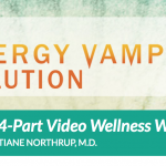 The Energy Vampire Solution by Christiane Northrup