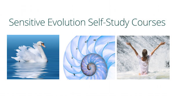 Sensitive Evolution Self-Study Courses